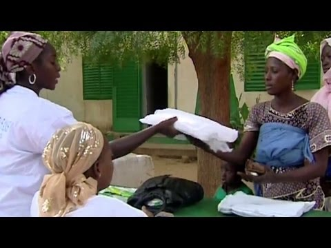 Fighting Malaria In The Senegal River Basin - Smashpipe Nonprofit