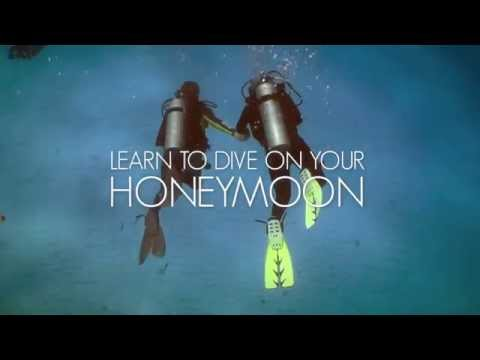 Scuba Diving On Honeymoon