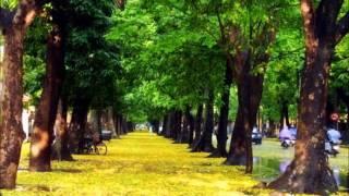 Hanoi, my hometown.wmv