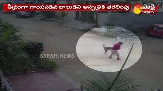 Viral Video: Street dog attacks boy in Telangana, creates ..