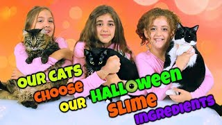 Cats Choose Our Halloween Slime Ingredients Challenge!