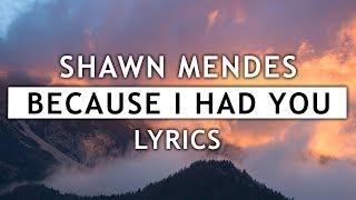 Shawn Mendes - Because I Had You (Lyrics)