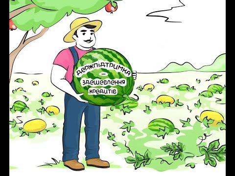 Мінагрополітики запрошує аграріїв долучитись до програми держпідтримки зі здешевлення кредитів