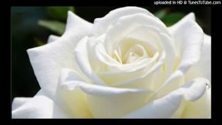 Today's Tango Is... Rosa Blanca - Francisco Canaro 17-07-1930