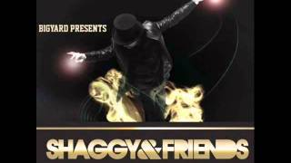 Good Times Roll - Shaggy featuring Ty-Arie