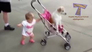 Little baby and black dog 🐕 go for a around