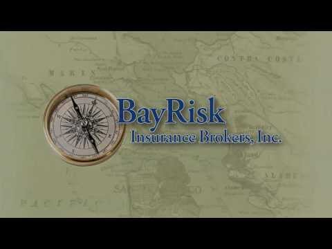 BayRisk Insurance Intro