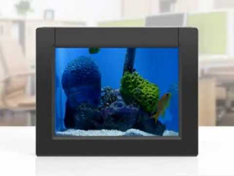 "Aluratek eQuarium 8"" Digital Aquarium - Product Demo"