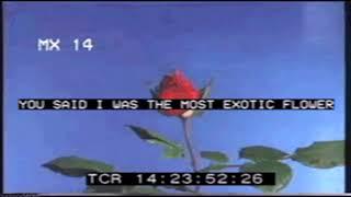 xxxtentacion-x-trippie-redd-type-beat-love-is-fake-prod-nonbruh.jpg