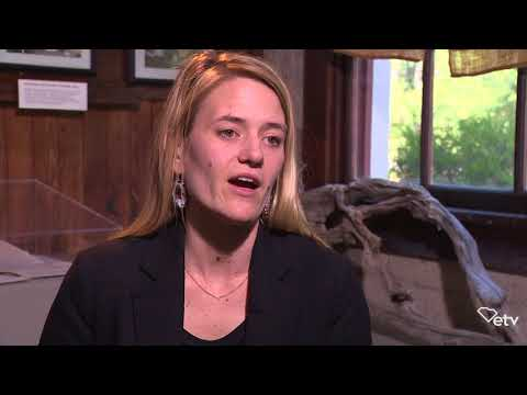 screenshot of youtube video titled Kate Parks Schaefer - Full Interview | Sea Change
