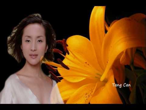 中国民謡 茉莉花(ジャスミン) by Tang Can (湯燦)
