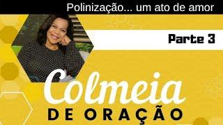 24/07/19 - Colmeia de Oração - Parte 3 - Polinização... um ato de amor. - Rosana Fonseca
