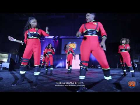 Delta Sigma Theta 2016 Atlanta Greek Picnic $10,000 Step show (Official Video) #AGP2016