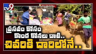 Andhra Pradesh: Pregnant woman carried in doli for 8 km, d..