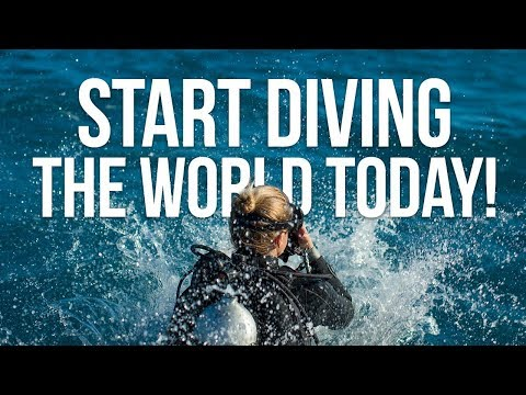 Start Diving The World Today!