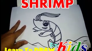 Ocean How To Draw A Shrimp Cute Animals Cute Drawing