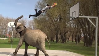 Best Videos of the Week - People Are Awesome..