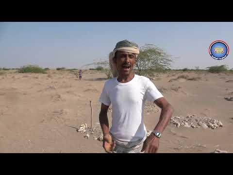 ألغام الحوثي تمزق جسد طفل أمام والدته في الخوخة