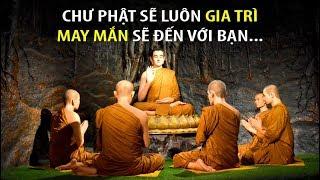 101 Lời dạy thần kỳ của ĐỨC PHẬT dù chỉ nghe 1 lần MAY MẮN GIÀU CÓ HẠNH PHÚC sẽ ập đến...