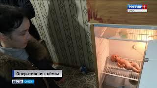 Сегодня в России отмечают день сотрудника органов следствия