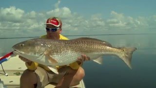 Oriental Redfish Promo
