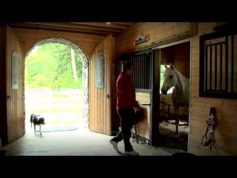 Barn Pros - Olympic 48 Gable Barn