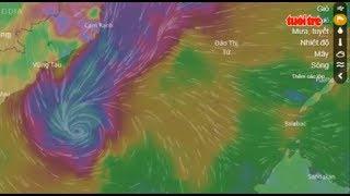 Trực tiếp ⚡ Tận mắt xem đường đi của bão từ vệ tinh