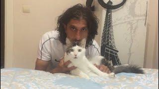 Aklı ve yetenekleriyle bizi şaşırtan kedi ŞANS