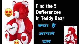 Find the five defference in teddy bear