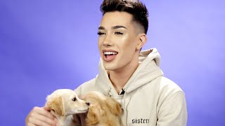 James Charles Plays With Puppies While Answering Fan Questions