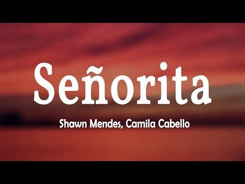 Shawn Mendes, Camila Cabello - Señorita (Lyrics Video)