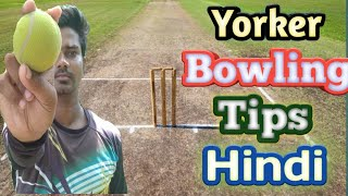 How To Bowl A Perfect Yorker In Cricket |  Yorker Bowling Tips In Cricket !!