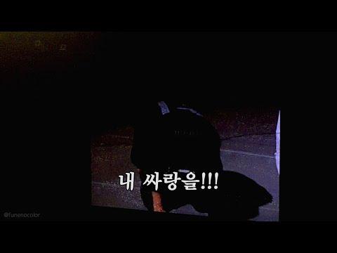 20171126 엘리시온 엔딩 멘트 (자막ver) ElyXiOn Ending Comment