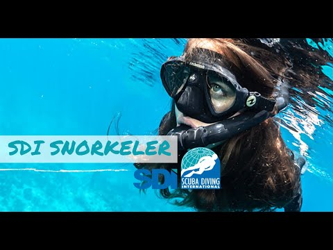 Snorkeling Online Tutorial