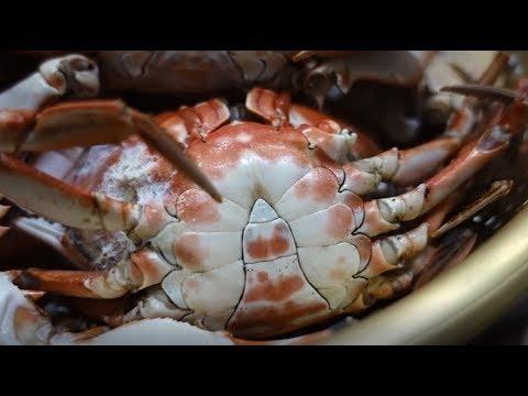 박하지,돌게,민꽃게,뻘떡게 찜과 탕 Japanese swimming crab [맛있겠다 Yummy]