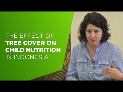 CIFOR's Science@10 – Amy Ickowitz on the effect of tree cover on child nutrition in Indonesia