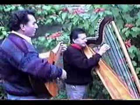 Camilo Zuñiga y Mario Garcia - Arpa - Camino de Luna