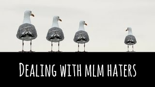 How To Deal With Network Marketing Haters