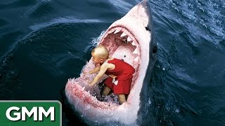 6 Strangest Things Swallowed by a Shark
