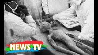 Người ngoài hành tinh đã chết ở New-Mexico?