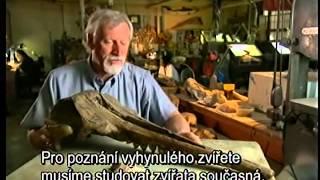 Prehistorickí lovci - Megalodon