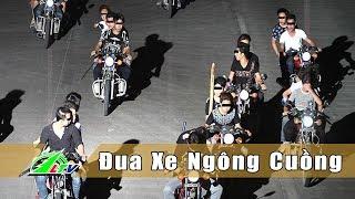 [An Ninh] Nhóm Đua Xe Trái Phép Ngông Cuồng | Lâm Đồng | LDTV
