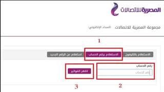 استعلم عن فاتورة التليفون الارضي شهر يناير 2018 موقع المصرية ...
