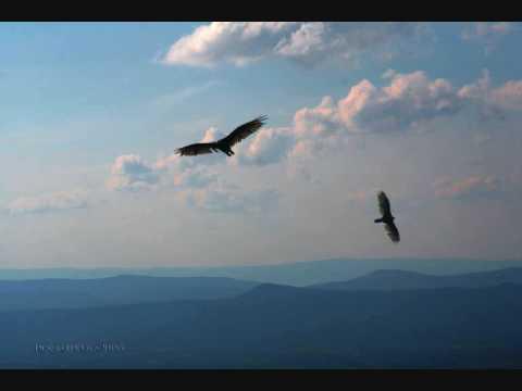 7раса - Тем кто умел летать