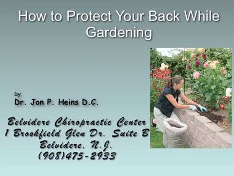 How to Protect Your Back While Gardening