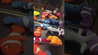 Arcade Game | 42 Elaut Optimum Cra | 42 Elaut Optimum Cra