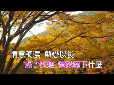 秋意上心頭-陳淑樺歌詞《Karaoke》