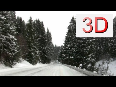 3D Film: Winter Forest Ride
