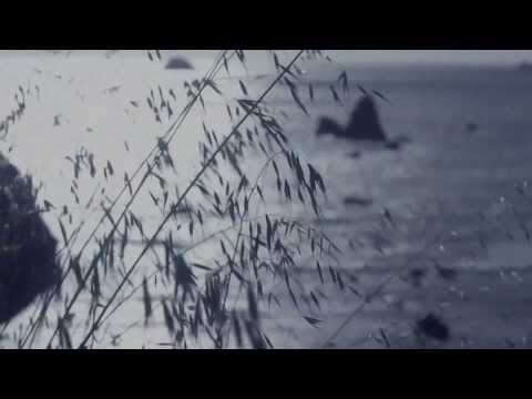 Bethel Music_Tides潮汐_Trailer 01(中文版)