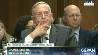 Defense Sec Mattis & Secretary Of State Tillerson Testify On Authorization For Use Of Military Force